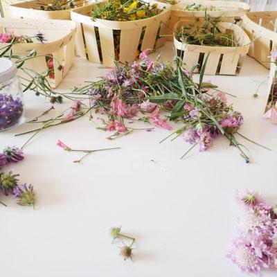 bougie florale paris - bougie fleurs séchées