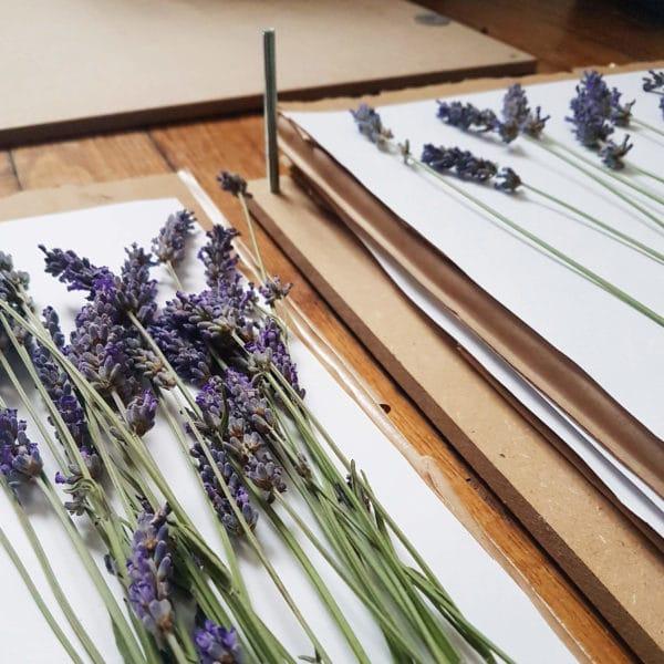 Atelier Presse à fleurs Ponoie - Atelier DIY Paris - Atelier Fleurs séchées