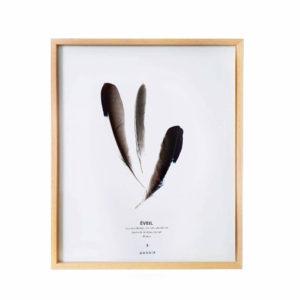 Plumier Geai des Chênes #ÉVEIL 24 x 30 cm - Plumes sous verre