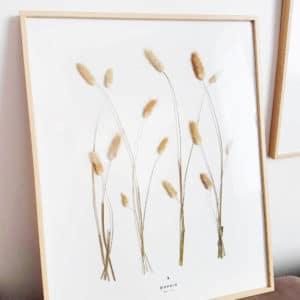 Herbier Lagure Ovale #LIBERTÉ 40 x 50 cm - Herbier fleurs séchées