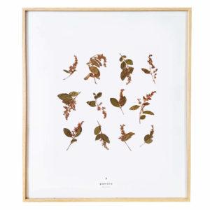 Herbier Lilas #BEAUTÉ 40 x 50 cm - Herbier fleurs séchées PARIS