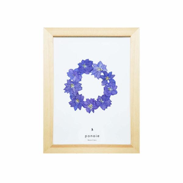 Herbier Delphinium bleu #PROTECTION 18 x 28 cm - Herbier fleuri PARIS