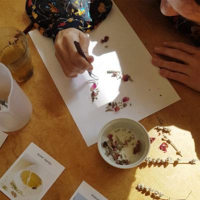 Fleurs de Chrysanthème - Réalisez vos bougie DIY - Fleurs bougie fleurie