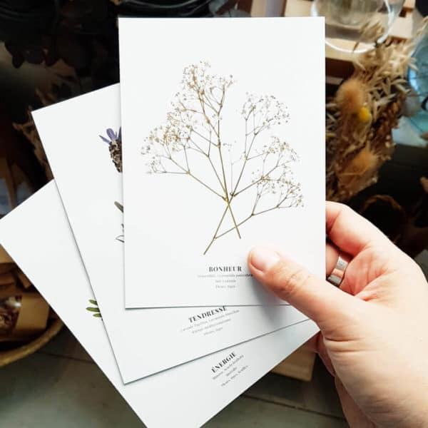 Carte postale Gypsophile Bonheur - Carte postale avec enveloppe kraft