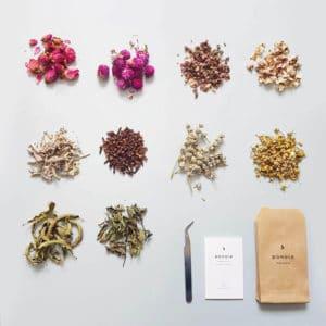 Eucalyptus stabilisé - Réalisez vos bougie DIY - Fleurs pour bougie fleurie