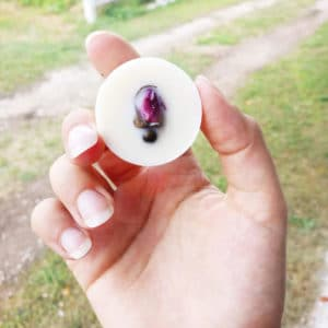Parfum solide pour linge * Pastilles parfumées Rose de Damas x 4