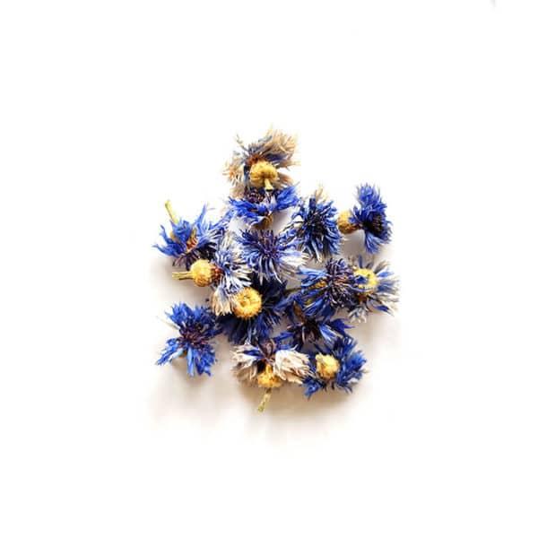 Fleurs de bleuet séchées - Réalisez vos bougie DIY - KIT BOUGIE DIY