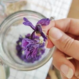 Fleurs séchées de Mauve - Ingrédient pour bougies DIY - KIT BOUGIE DIY